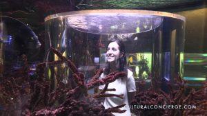 Science Museum and Aquarium